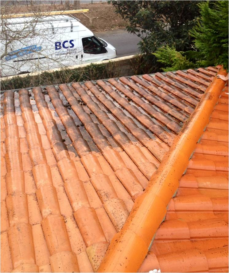 nettoyage de toitures societe nettoyage des toitures. Black Bedroom Furniture Sets. Home Design Ideas